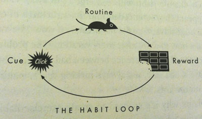 The habit loop: much more obvious if you're a mouse.