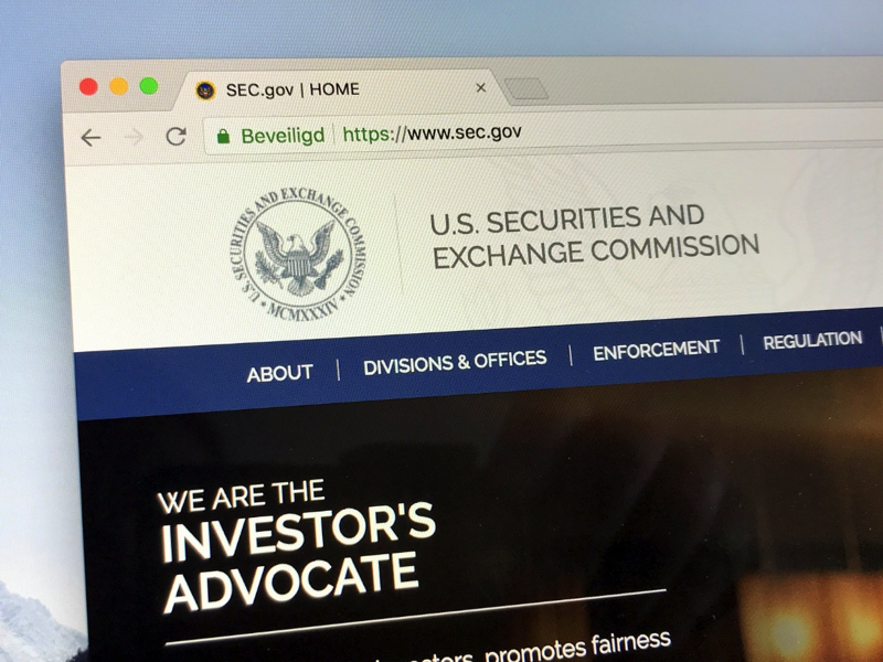 US Securities and Exchange Commission home page.