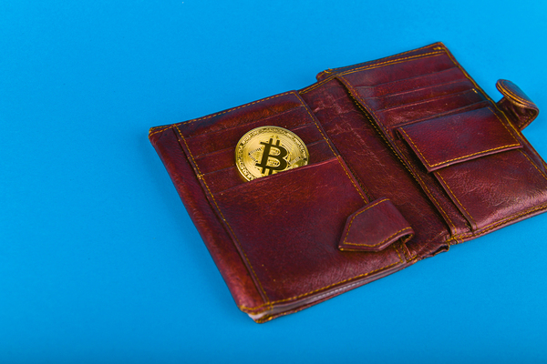 Leather wallet with a gold coin.