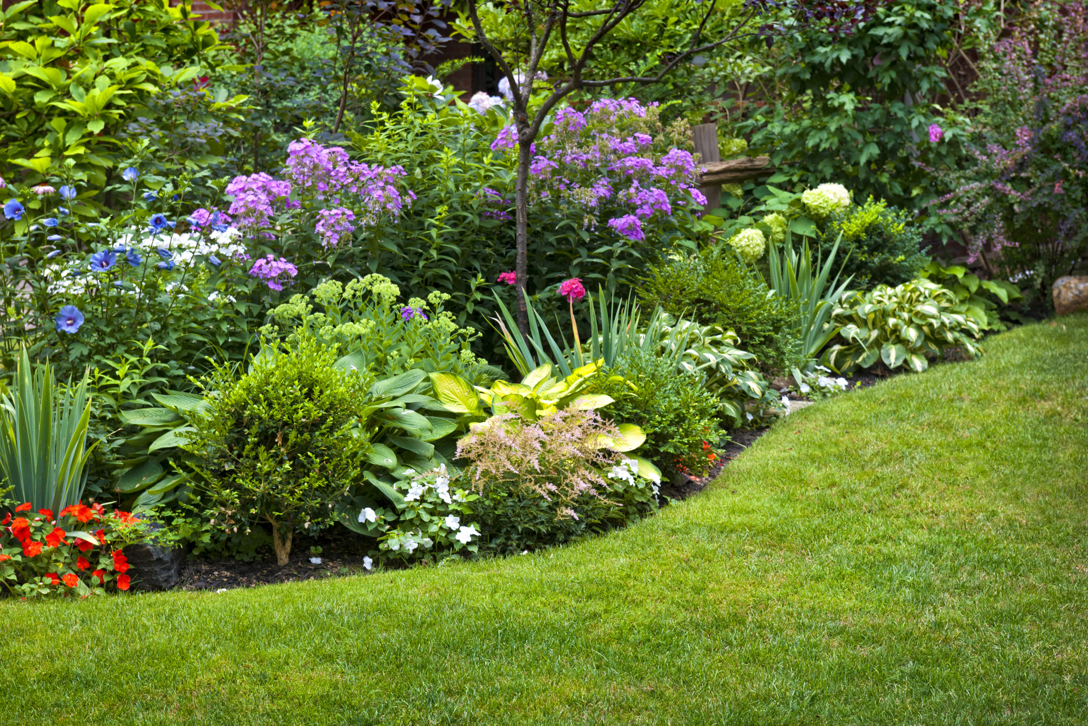8 exterior home improvements under 500 for Best plants for front flower bed