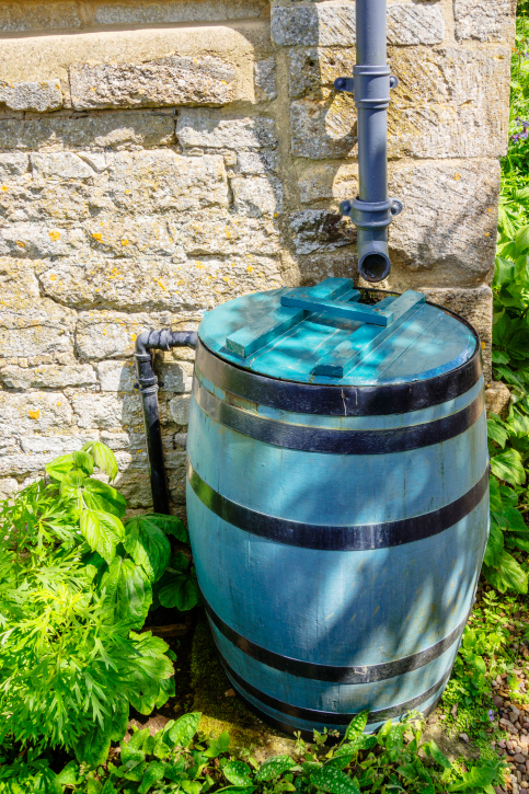 Rainwater harvesting when you 39 re on a tight budget for Rainwater harvesting quotes