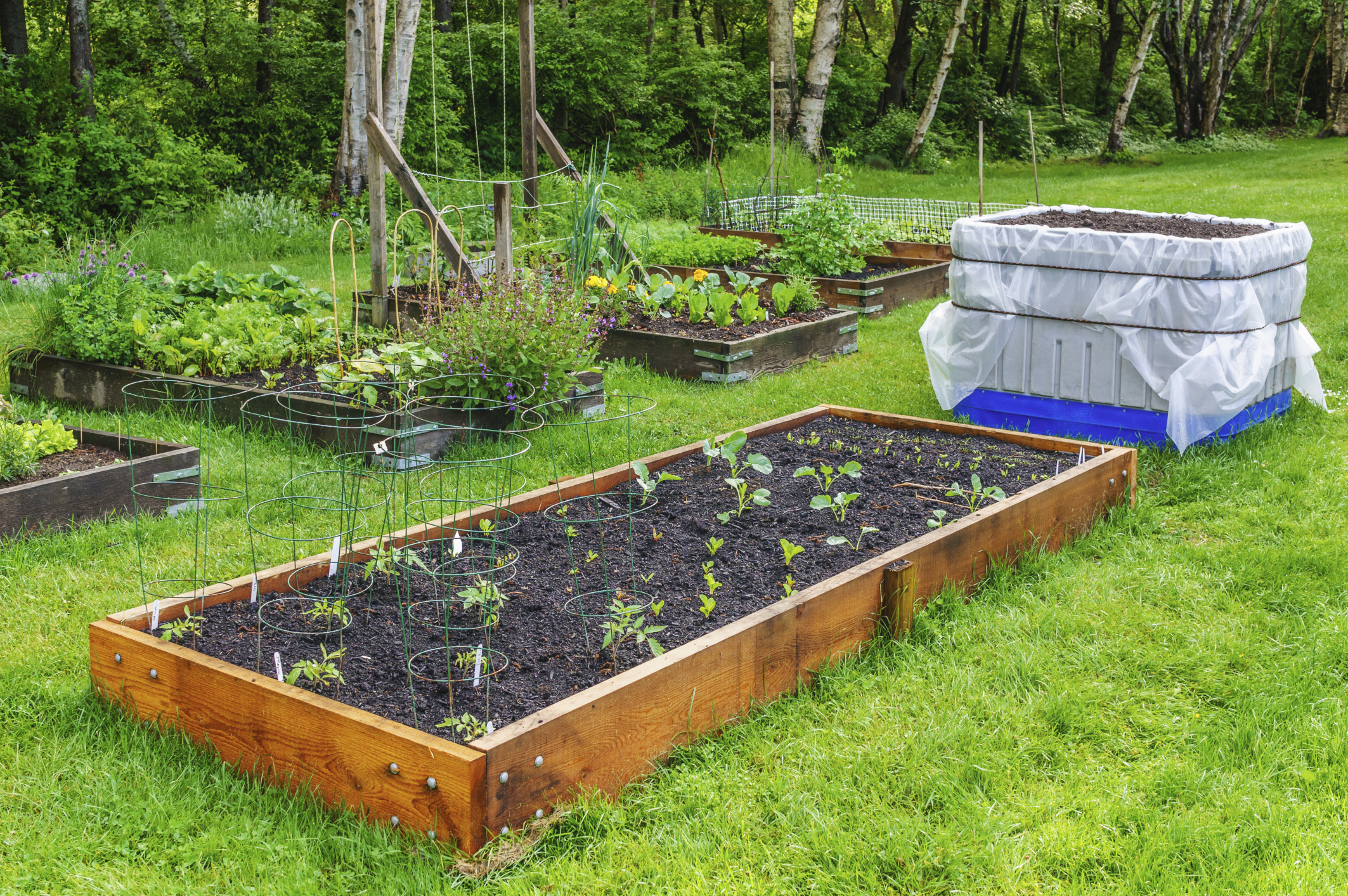 Beautiful Wherever You Set Up Your Garden, Make Sure That The Soil Is Appropriate For  Planting Fruits And Vegetables. Good Soil Should Be Well Aerated, ...