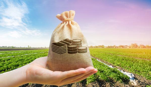 Burlap bag and crops.