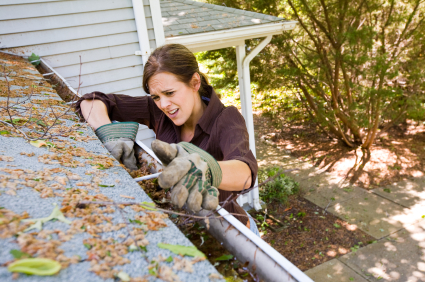 5 Weird Stories About Gutters And Roofs Gutter Helmet