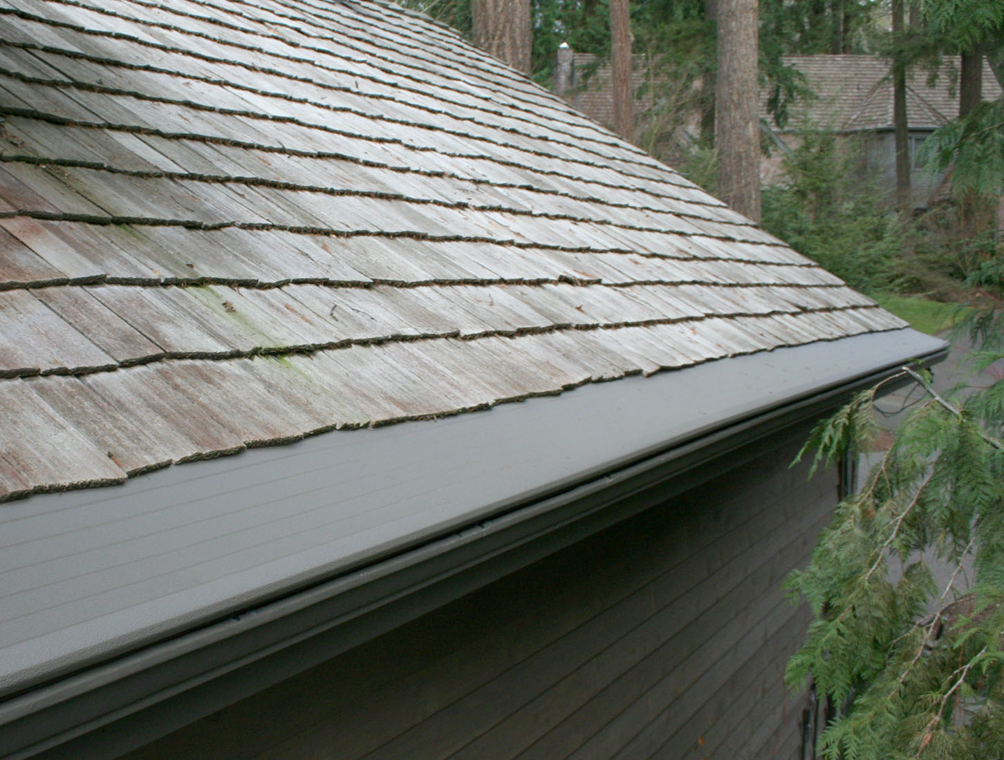 Do These 5 Things Before Overflowing Gutters Damage Your