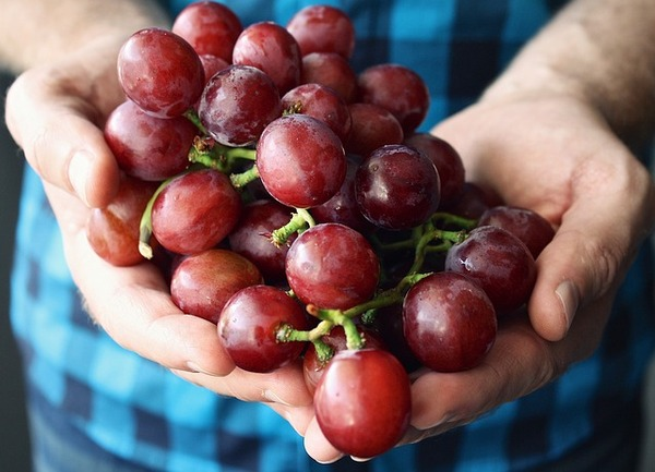 Group of red grapes.