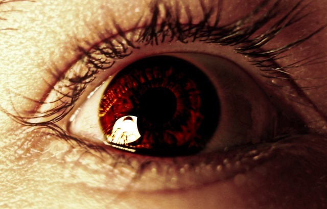 eye peter sheik 640px 3460442324 d7656154a5 o Retinal Scans to Individualized Cosmetics: Big Data Biometrics