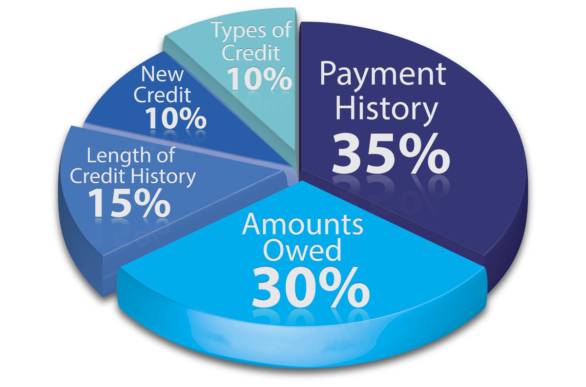 Credit score components.