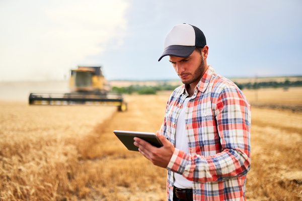 Farmer in the field using a tablet.