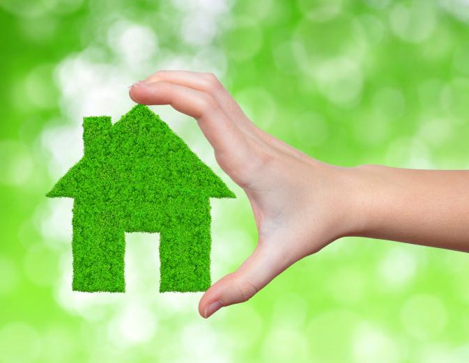 Green home inspectors