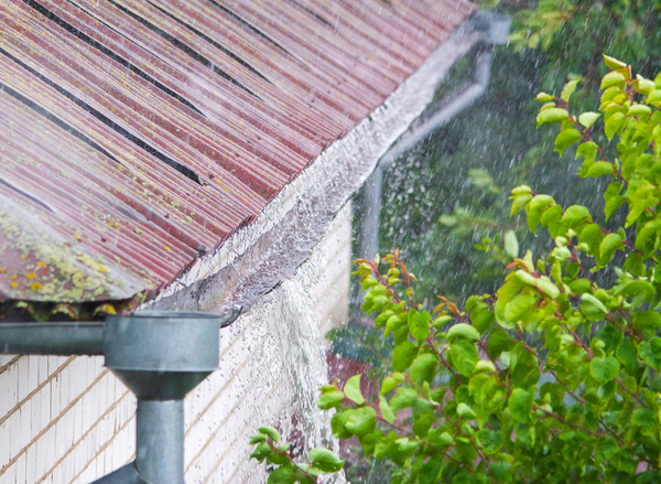 Roof top with damaged gutters.