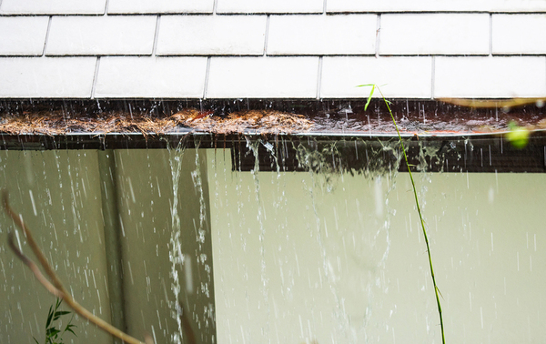 Gutters with rain and leaves.