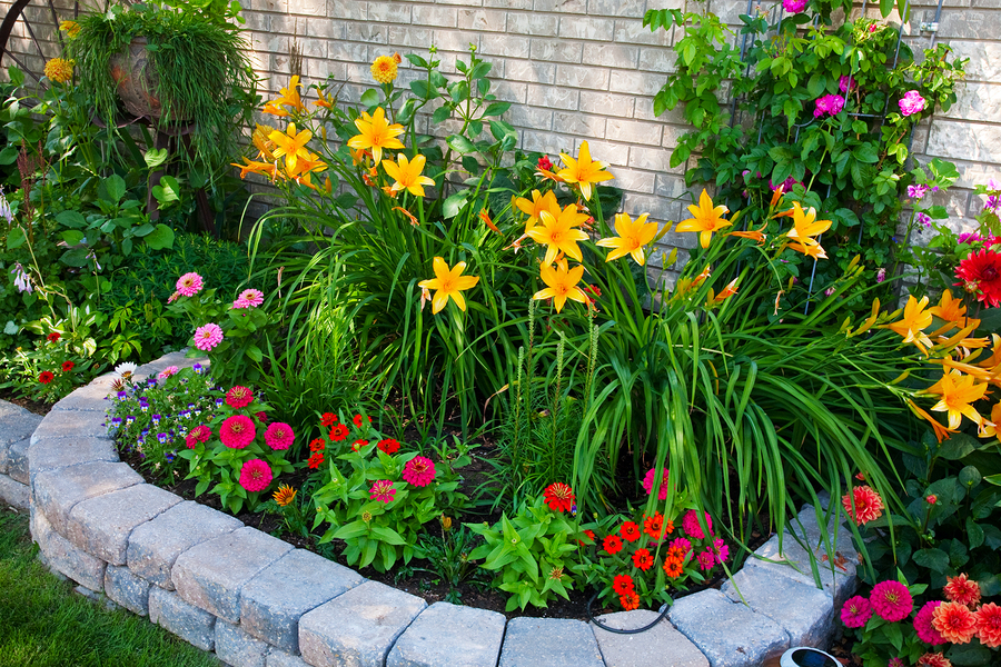tips to keep your flower beds beautiful  moonworks, Beautiful flower