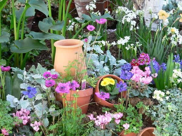 Outside flower garden.