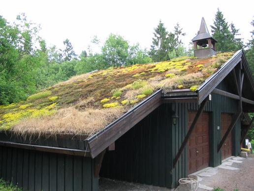 Plant roofs. Yes you can actually plant a garden or lawn on your roof. Known as u201chorticultural roofsu201d they consist of a few inches of sealed material onto ... : plant roofs - memphite.com