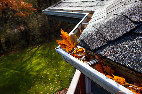 Roof with leaf filled shutters.