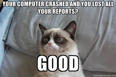 Grumpy Cat on IT.