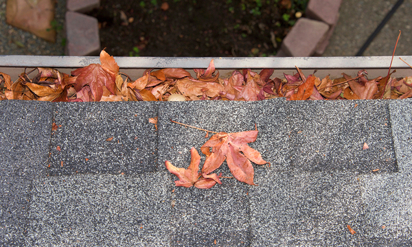 Gutter filled with leaves.