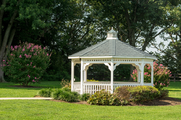 White gazebo with trees and shrubs in the background.