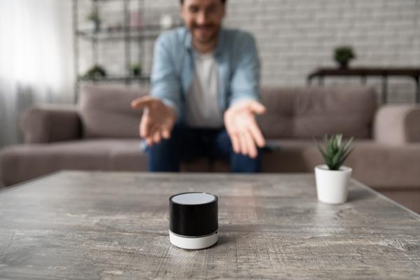 Voice assistant device.
