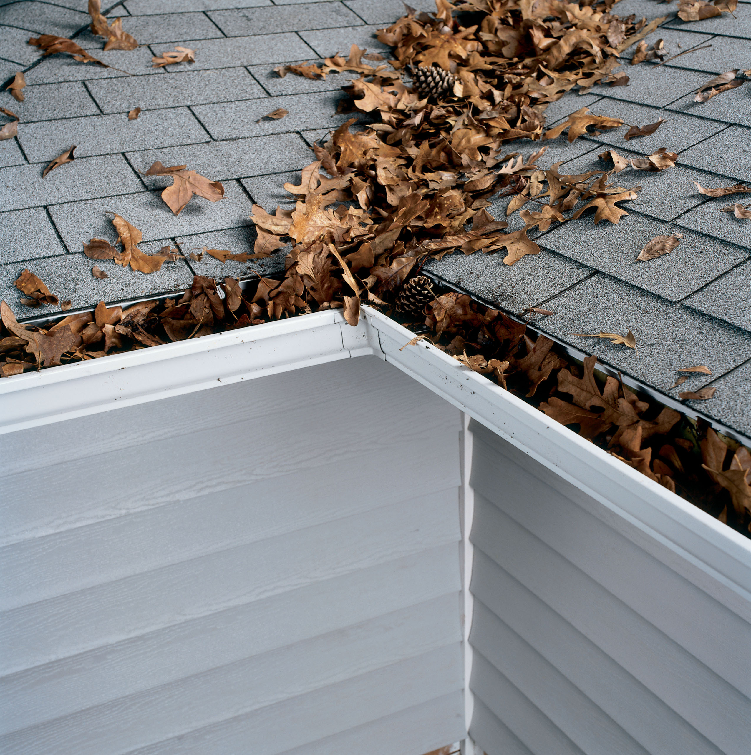 New England Gutters That Are Clogged With Debris Do Not