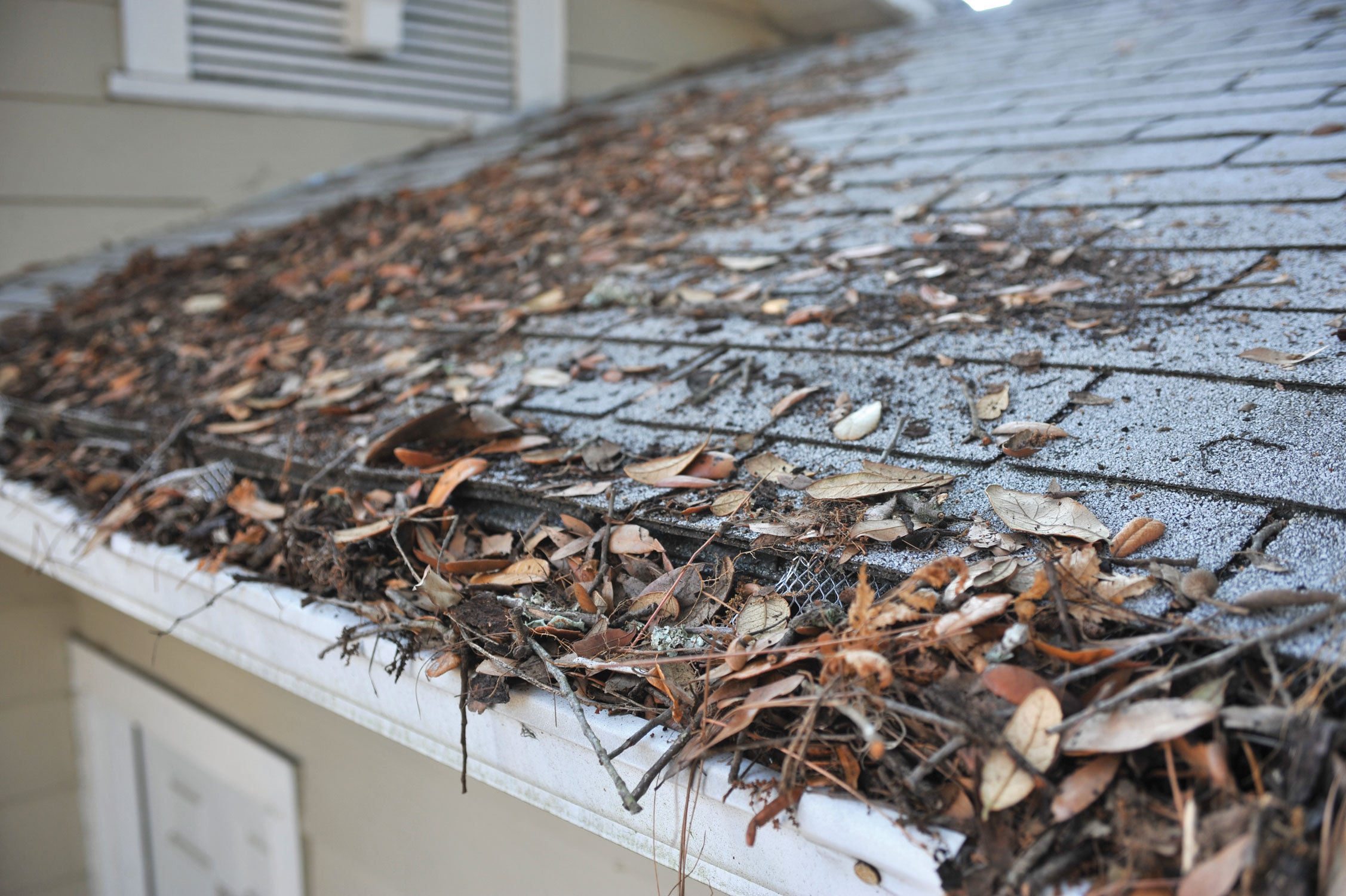 A Gutter Screen Will Help Keep Debris Out Of Your Gutters