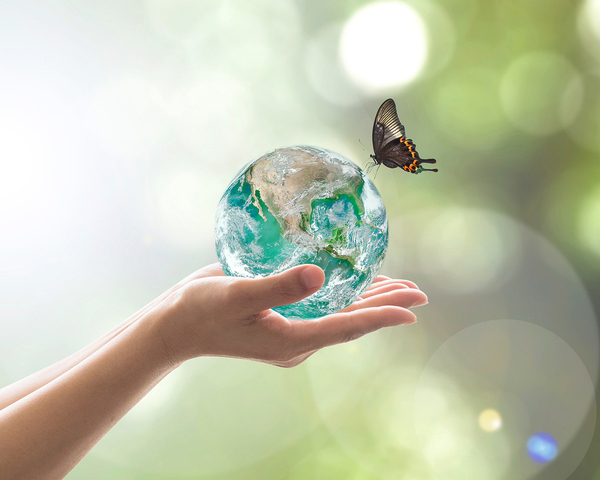 Person holding a glass earth with a butterfly on top.