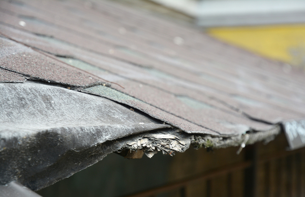 Damaged shingles on a roof.