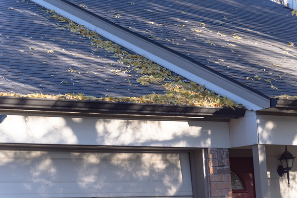 Roof with leaves.