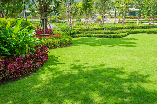 Beautiful green lawn with bushes and flowers bordering the edge.