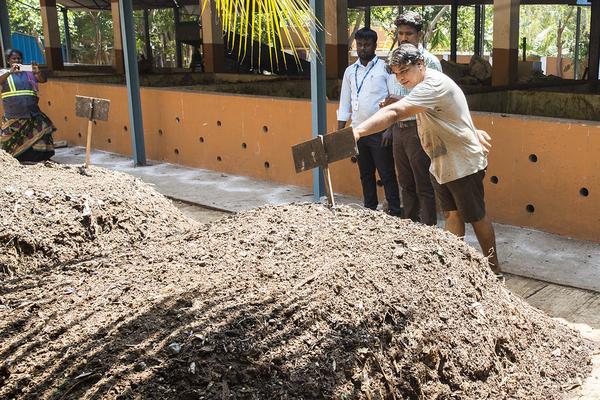 Mounds of biodegradable debris.