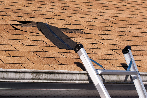 Cracked roofing.