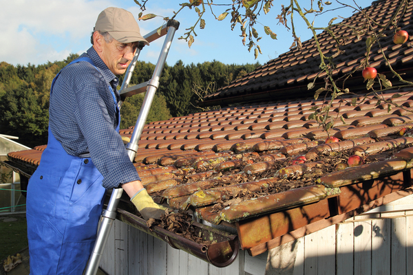 Man up on a ladder cleaning gutters.