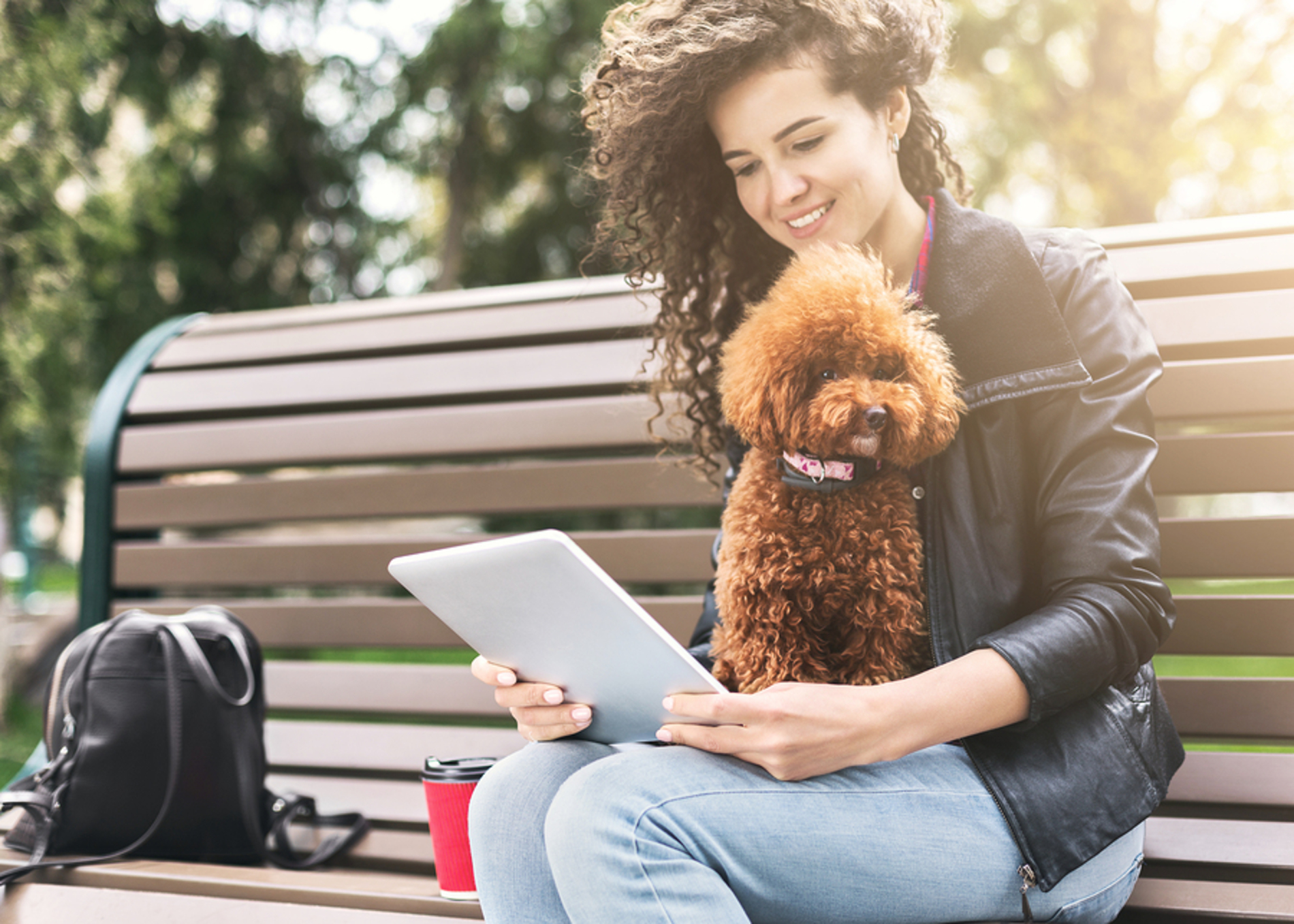 Woman sitting on a park bench with her dog and looking at her tablet.