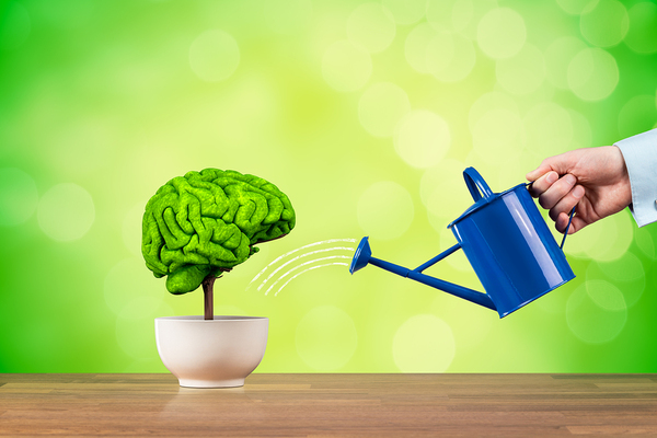 Watering a plant shaped like a human brain.