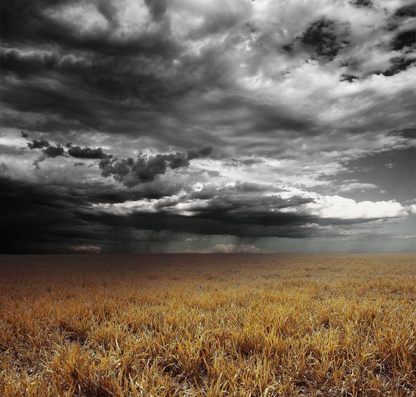 Field with dark clouds.